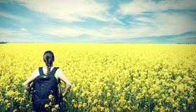 Young happy woman with backpack on a field of yellow rape Royalty Free Stock Photography