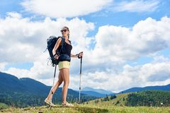 Woman hiker hiking on grassy hill, wearing backpack, using trekking sticks in the mountains. Young happy woman backpacker hiking mountain trail, walking on royalty free stock image