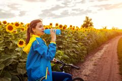 Young happy woman bicyclist drinking water after riding bicycle in sunflower field. Summer sport activity. Young happy woman bicyclist drinking water after royalty free stock photos