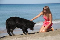 Young happy woman with black dog Royalty Free Stock Images