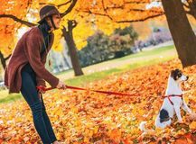 Young woman with dog outdoors in autumn Royalty Free Stock Photography