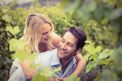Young happy woman embracing young handsome man Stock Photos