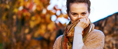 Young woman hiding in scarf in autumn evening Royalty Free Stock Photography