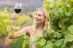 Young happy woman holding a glass of wine Royalty Free Stock Photography