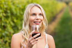 Young happy woman holding a glass of wine Stock Photos