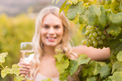 Young happy woman holding a glass of wine and looking at grapes Stock Photos