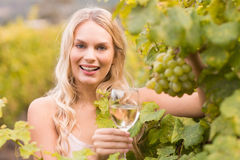 Young happy woman holding a glass of wine and looking at grapes Stock Images