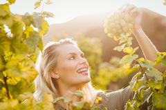 Young happy woman holding grapes Stock Image