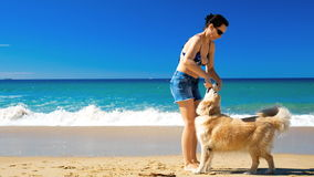 Young happy woman playing with Golden Retriever dog on the beach. Sunny day stock footage
