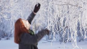 Young happy woman shaking snow from a tree branch in winter park. Slow motion stock video