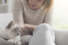Woman petting her beautiful cat at home stock images