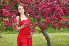 Young happy woman walking. In garden with apple trees Stock Photos