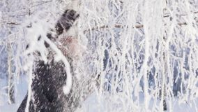 Young happy woman is walking under snow-covered trees in a winter forest. Slow motion stock video footage