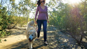 Young happy womanwalking with Golden Retriever dog on the beach stock video