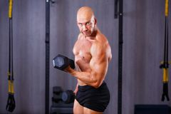 Young healthy bald ripped man with big muscles training with dum royalty free stock images