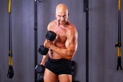 Young healthy bald ripped man with big muscles training with dum royalty free stock photos