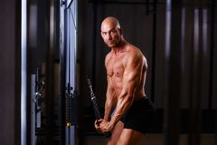 Young healthy bald ripped man with big muscles training in gym. Fitness, sport, training, motivation and lifestyle concept Royalty Free Stock Image