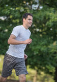Young Healthy Man Jogging in the Woods Royalty Free Stock Photos