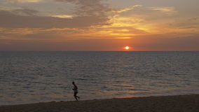 Man Running. A young man wearing shorts and a white tanktop is running / jogging on a beautiful, tropical paradise beach at sunset. Running from right to left stock video footage