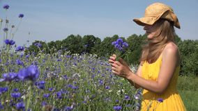 Young herbalist woman gather blue flowers and smell bouquet. 4K. Young herbalist woman gather blue flowers and smell them. Focus change shot from flowers to stock footage