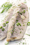 Young herring Royalty Free Stock Photos