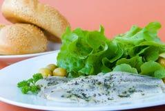 young herring-marinated Stock Image