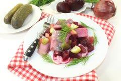 Young herring salad Royalty Free Stock Photos