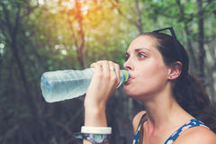 Young hiker drinking water at Mangrove forest, Stock Photo