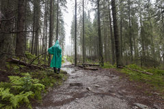 Young Hiker wearing green raincoat walking on Tatry forest path Stock Images