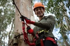 Young hiker woman holding zip line in the forest during daytime. Portrait of young hiker woman holding zip line in the forest during daytime Stock Image