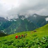 Young hikers trekking in Svaneti. Georgia Royalty Free Stock Image