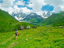 Young hikers trekking in Svaneti. Georgia. Shkhara mountain in the background Stock Images