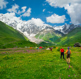 Young hikers trekking in Svaneti. Georgia. Shkhara mountain in the background Royalty Free Stock Photography