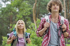Young hiking couple looking away in forest Royalty Free Stock Photo