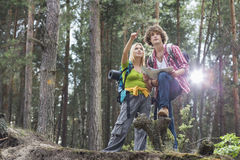 Young hiking couple with map discussing over direction in forest Royalty Free Stock Photography