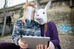 Young hipster cuople horse and rabbit mask using tablet Stock Images