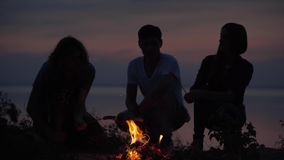 Young hipster friends chilling on seaside with bonfire making sausage with a fire and chatting in cozy summer evening. Young hipster friends chilling on seaside stock video footage