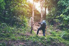 Young hipster man puts bag whit shoes footwear walking to climbi. Ng mountains travel forest nature background, Local thailand Royalty Free Stock Photography
