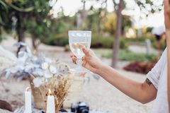 Couple clinks glasses on chic picnic Stock Photos