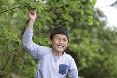 Young Hispanic boy on a fence in a woodland Stock Photo