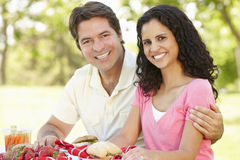 Young Hispanic Couple Enjoying Picnic In Park Stock Photos