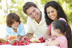 Young Hispanic Family Enjoying Picnic In Park Stock Photography
