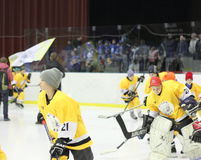 Young hockey players Royalty Free Stock Photo