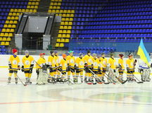 Young hockey players royalty free stock images