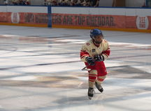 Young Hockey Players Royalty Free Stock Photos