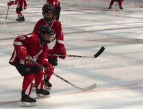 Young Hockey Players Stock Photography