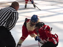 Young Hockey Players Royalty Free Stock Image
