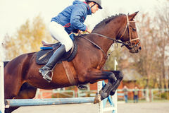 Young horseman on show jumping competition. Rider with sorrel horse jump over the hurdle Stock Photo