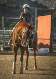 Young Horseman in Training Royalty Free Stock Image