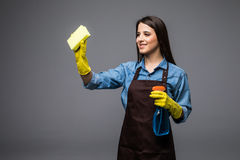 Young housewife cleaning with detergents in hands on grey backgroung Stock Images